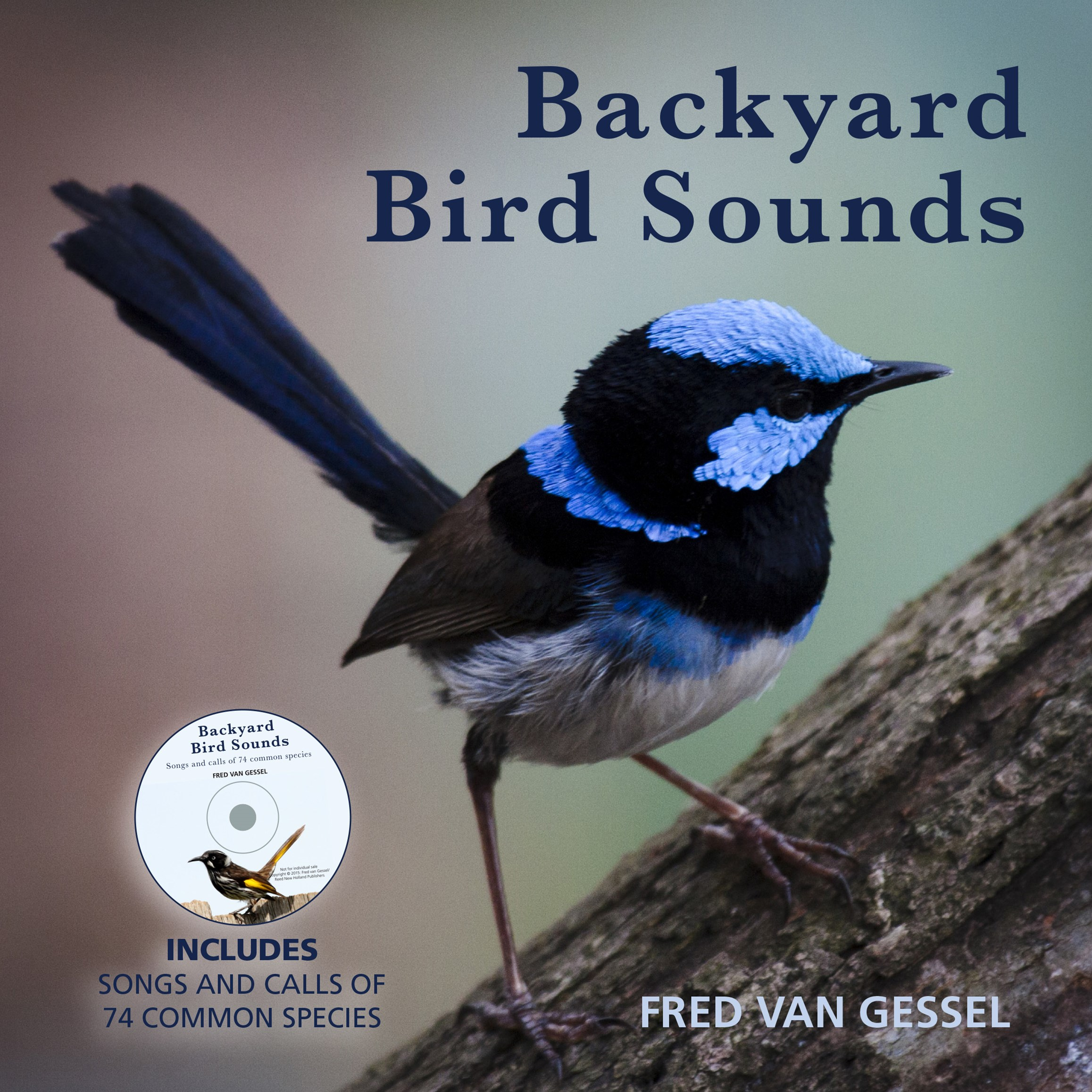 Backyard Bird Sounds with CD