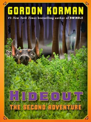 Hideout: The Second Adventure