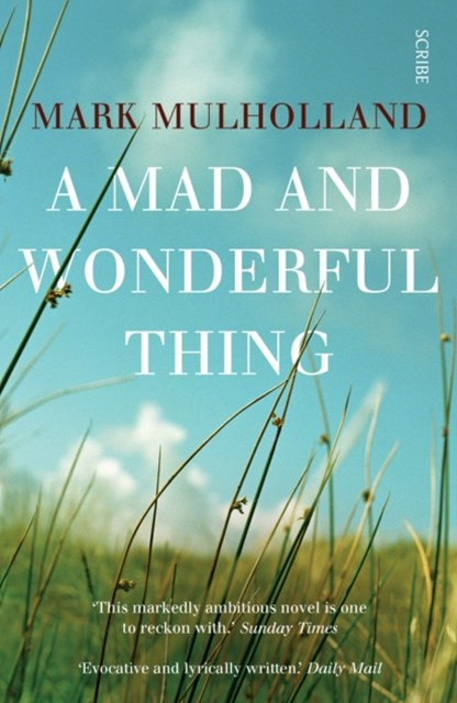 Mad and Wonderful Thing