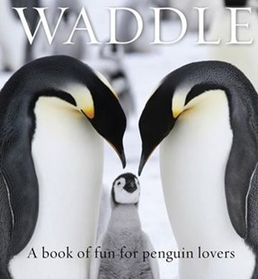 Waddle: A Book Of Fun For Penguin Lovers by Lloyd Spencer Davis (9781925335910) - HardCover - Pets & Nature Birds