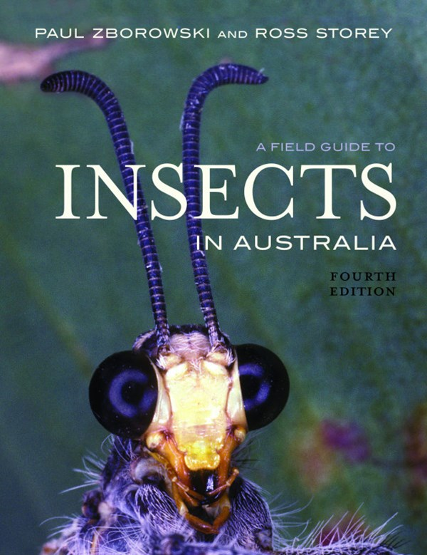 A Field Guide to Insects of Australia