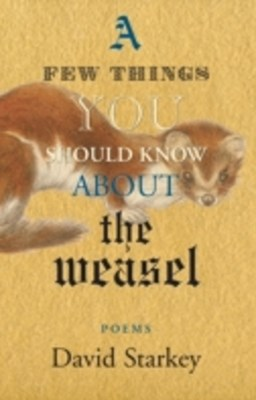 Few Things You Should Know About the Weasel