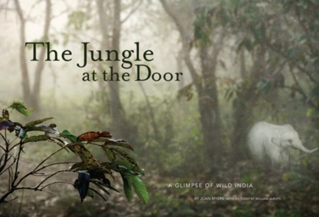 Jungle at the Door