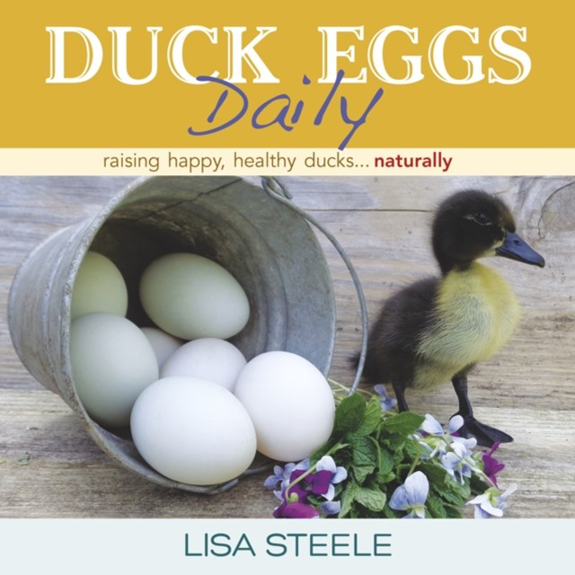 (ebook) Duck Eggs Daily