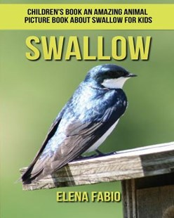 Swallow Children's Book by Elena Fabio (9781981275809) - PaperBack - Non-Fiction Animals