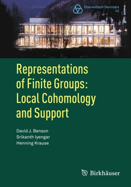 (ebook) Representations of Finite Groups: Local Cohomology and Support