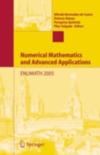 (ebook) Numerical Mathematics and Advanced Applications - Computing
