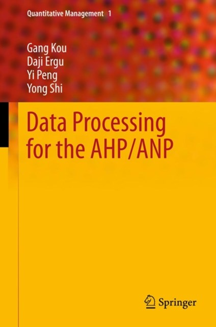 Data Processing for the AHP/ANP