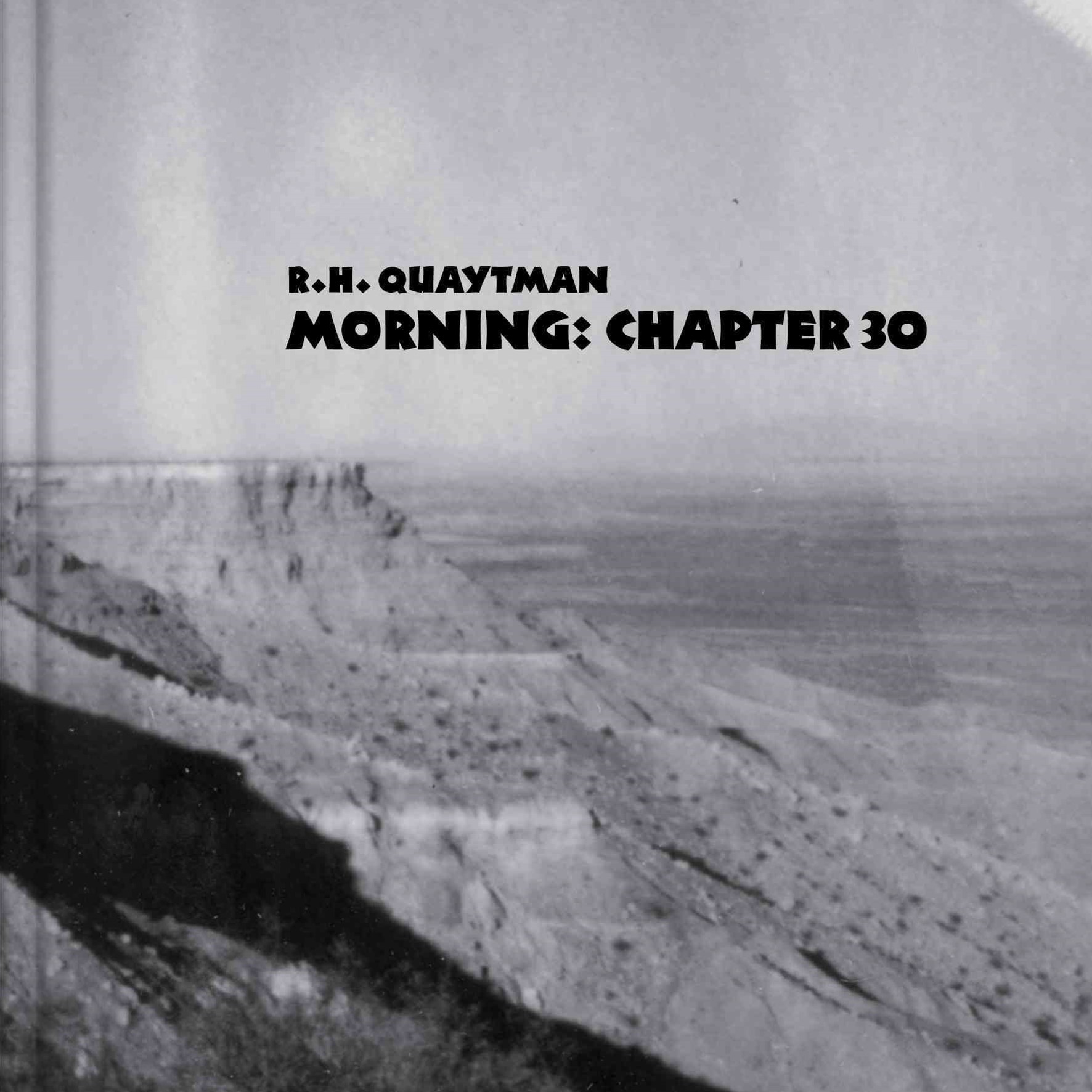 R. H. Quaytman: Morning Chapter 30