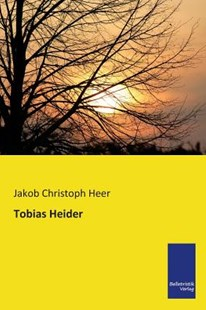 Tobias Heider by Jakob Christoph Heer (9783956990182) - PaperBack - Modern & Contemporary Fiction General Fiction