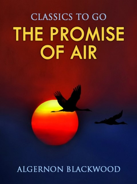 (ebook) Promise of Air