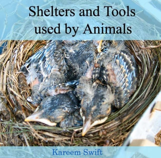 Shelters and Tools used by Animals
