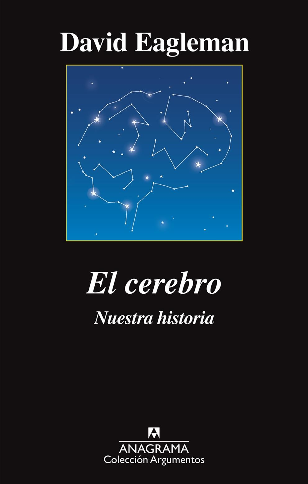 El cerebro/ The Brain
