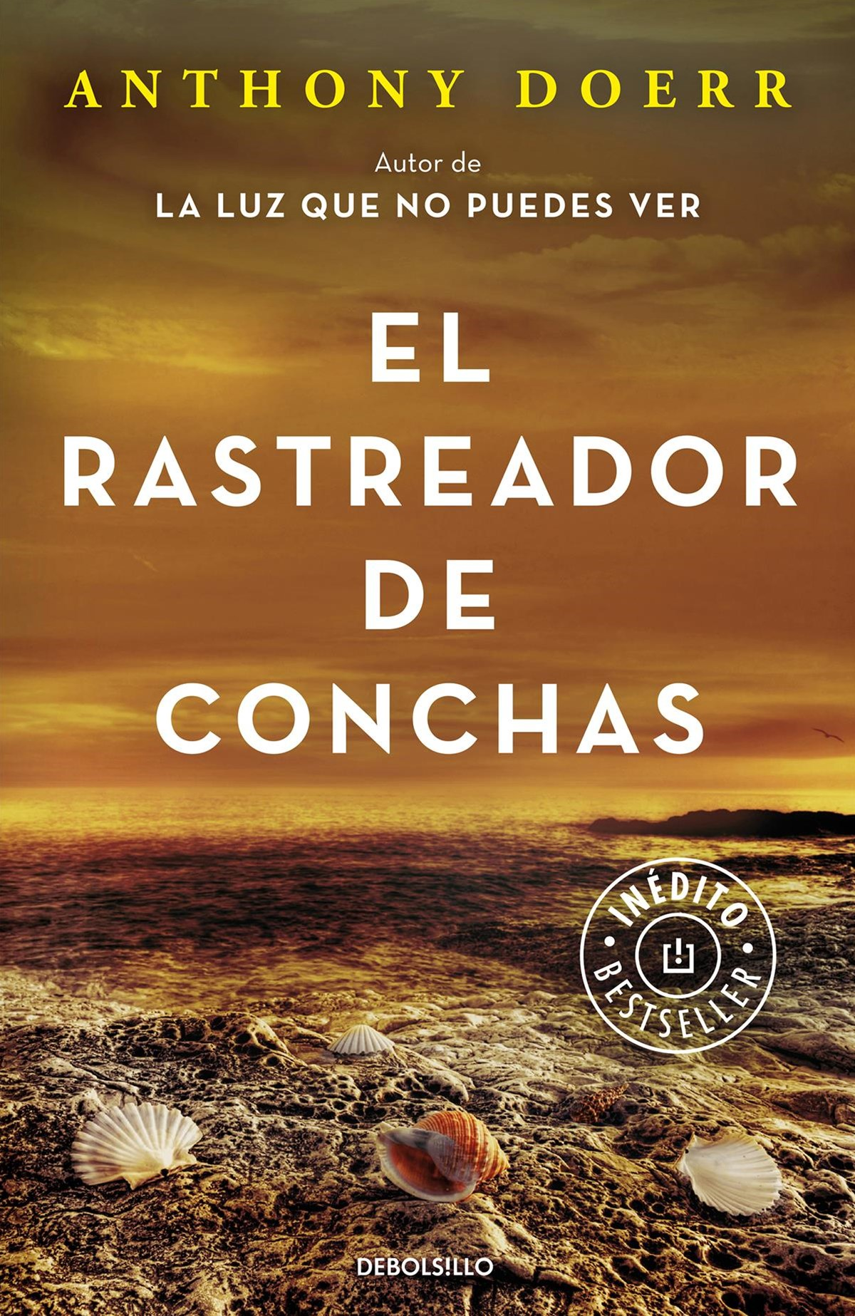 El rastreador de conchas/ The Shell Collector