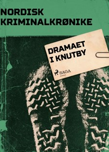 (ebook) Dramaet i Knutby