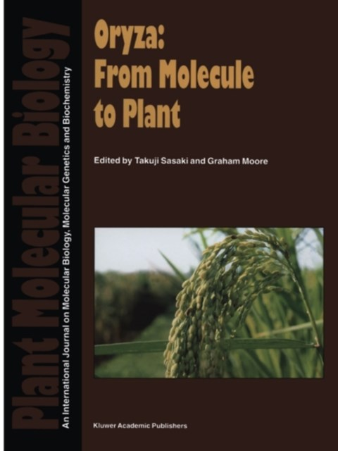 Oryza: From Molecule to Plant