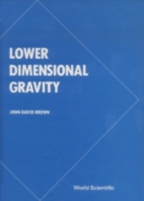 Lower Dimensional Gravity
